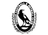 Yinnar FC logo